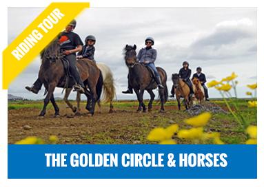 Golden Circle & Horses